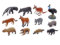 動物地理区・新熱帯区とオーストラリア区の代表的な哺乳類11種と鳥類1種