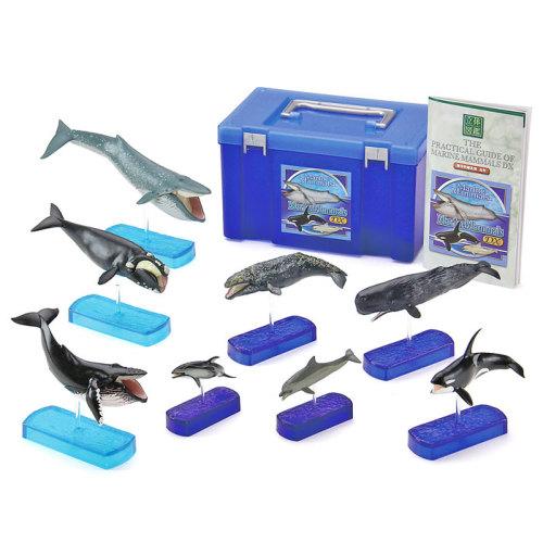 捕食をテーマに食性に特徴を持つクジラとイルカのフィギュア8種8個
