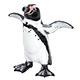 フィギュア フンボルトペンギン
