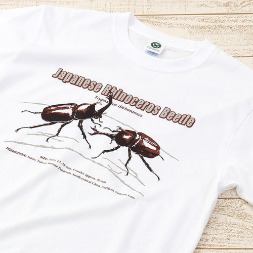 Tシャツ カブトムシ(日本) ホワイト S/M/Lサイズ