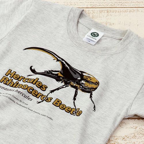 Tシャツ ヘラクレスオオカブト ライトグレー 130サイズ