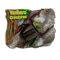 3D マグネット やんばるの生物 ヤンバルテナガコガネ