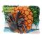 3D マグネット やんばるの生物 ヤシガニ
