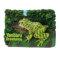 3D マグネット やんばるの生物 オキナワイシカワガエル