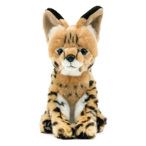 小さい頭部、しなやかな体と長い脚、オレンジがかった褐色の体毛と黒の斑紋を持った美しい小型のネコ